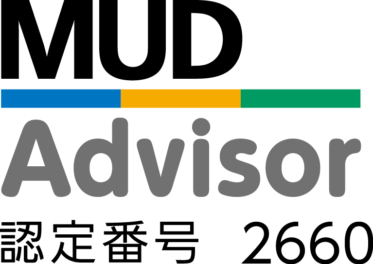 MUD Advisor 2660